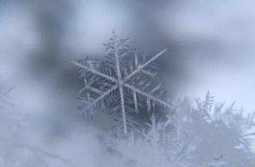 雪の結晶が音を吸収する!雪の日に静かなのは科学的な理由があった!