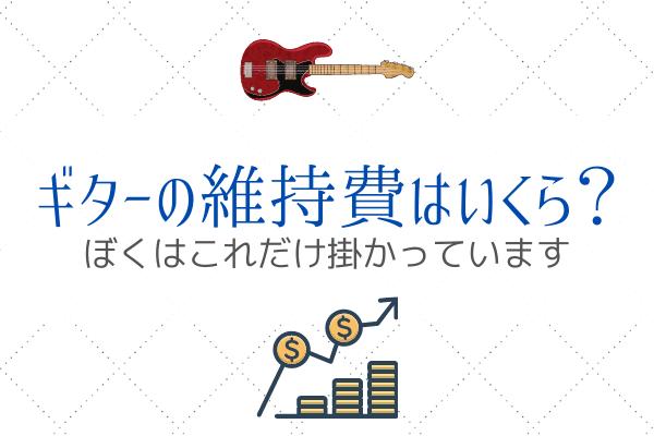 ギターの維持費 (3)